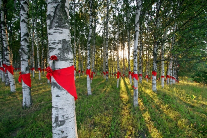 Kovalevsky Forest