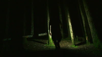stock-footage-person-walking-into-deep-dark-forest-at-night-with-lantern-creates-a-scary-setting