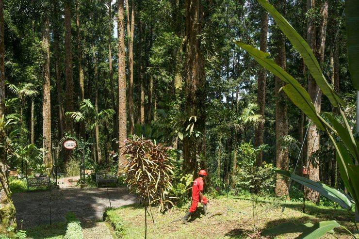 Kebun Raya Baturaden (Purwokerto)