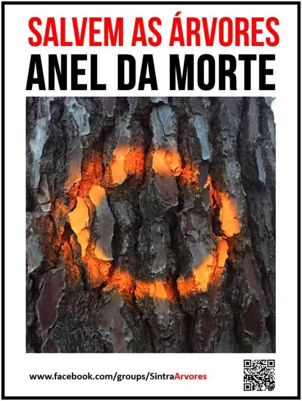 anel da morte nas arvores Sintra