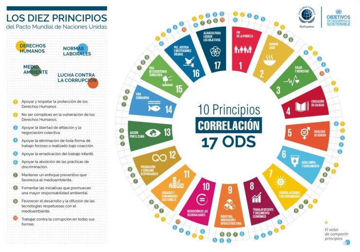 PRINCIPIOS + ODS